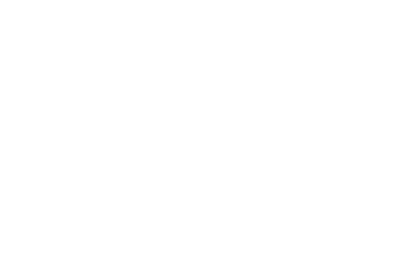 The Albert Haller Foundation logo